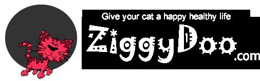 ZiggyDoo